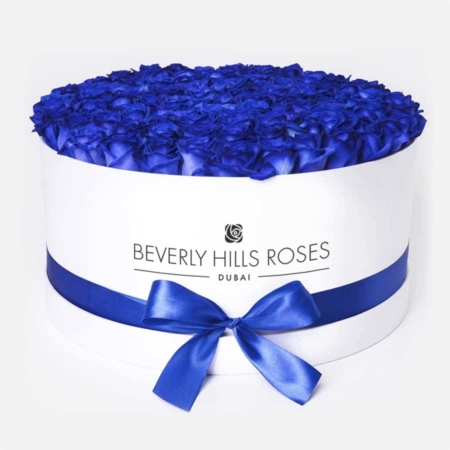 Blue roses in 'Lagoon' – Large white box