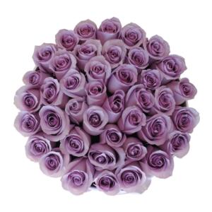 Purple roses in 'Vintage'