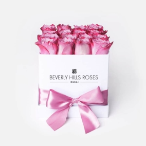 Pink roses in 'Candy'