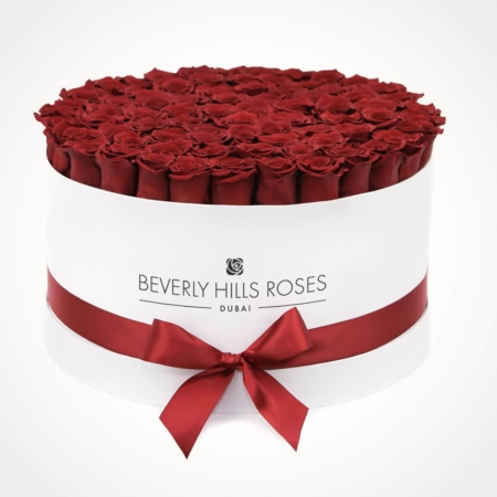 Red roses in 'Hollywood' – Large white box