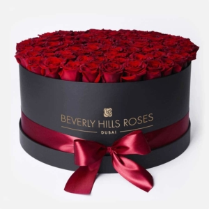 Red roses in 'Hollywood'