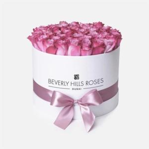 "Infinite Rose Dubai ""Candy"