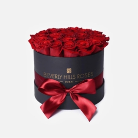 Red roses in 'Hollywood' – Small black box