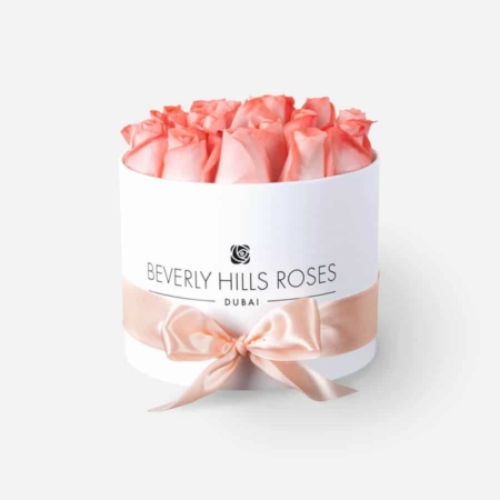 Peach roses in 'Blush' – Small white box