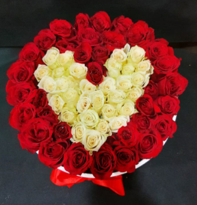 Red and white Roses in love and romance