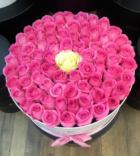 Pink roses & a White rose in 'Innocence' – Large white box