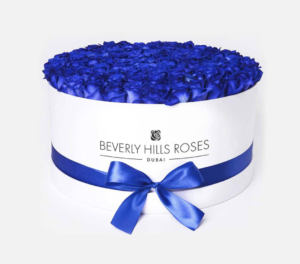 Blue roses in 'Lagoon'