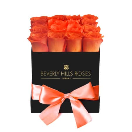 Orange roses in 'Sunset' – Square black box