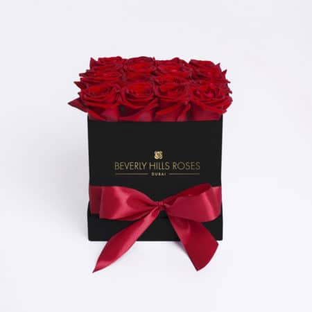 Red roses in 'Hollywood' – Square black box