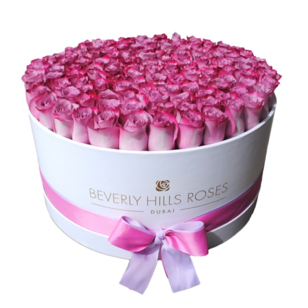 Purple-Pink roses in 'Candy' – Large white box