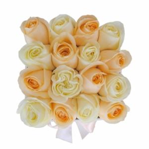 White & Peach roses in 'Pretty Woman'
