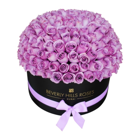 Purple roses in 'Angel Globe' – Large black box