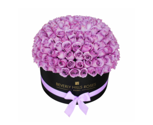 Purple roses in dome shape in box