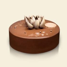 Chocolate Blossom