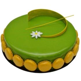 Choco Pistachio Cake