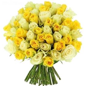 Roses in 'Lemon'