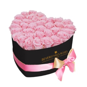 Pink roses in 'Baby Girl'