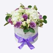 Purple roses & Hydrangea in Round Box